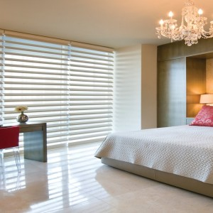 Window Collinear Blinds in Delhi