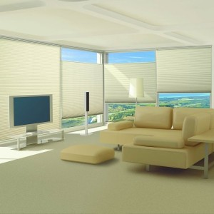 Window Pleated Blinds in Delhi