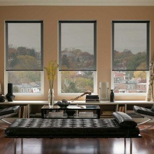Roller Blinds in Delhi