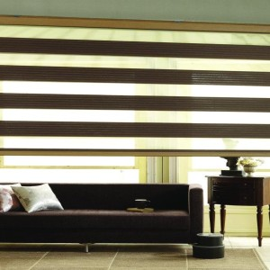 zebra blinds in Delhi